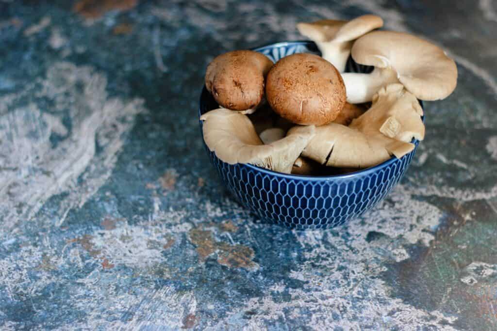 blue bowl of brown mushrooms illustrating conception COVID-19 Vitamin D